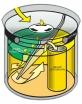 Siphon für UrinalLäufer-100/200